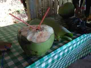 coconut-drink