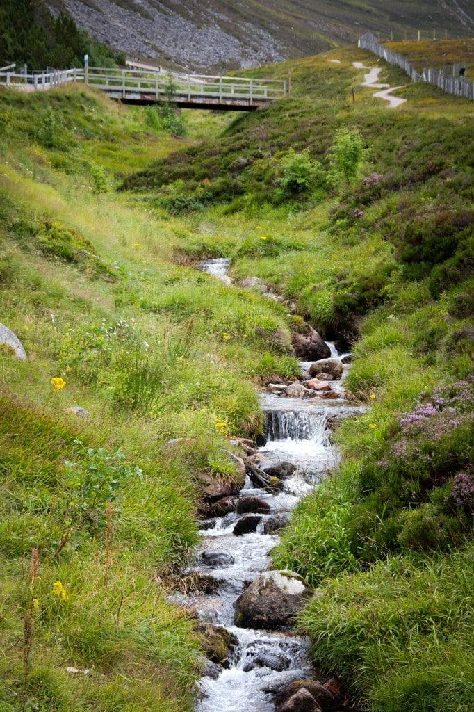 Scotland Stream