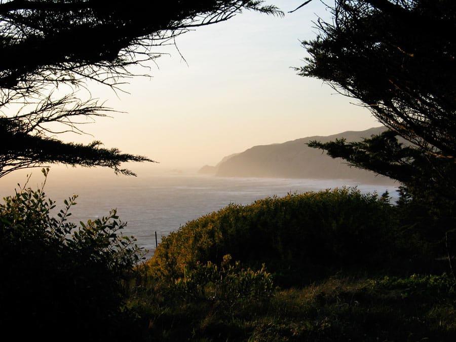 Commonweal, Northern California . Photo courtesy of Phil Buchanan.
