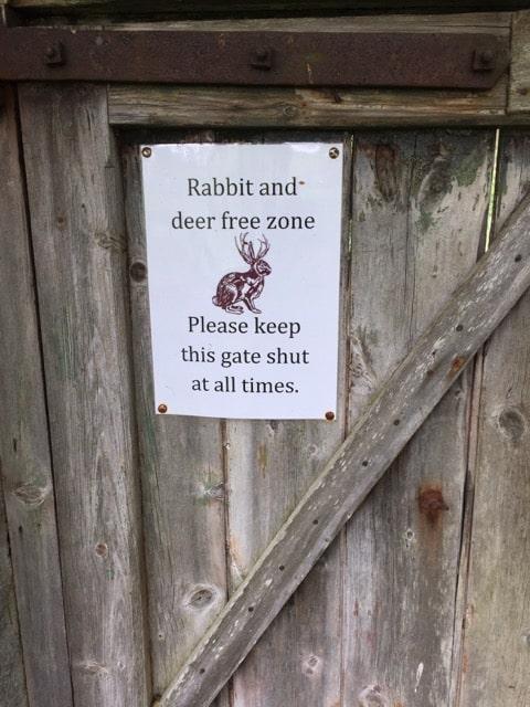 rabbit-free-zone