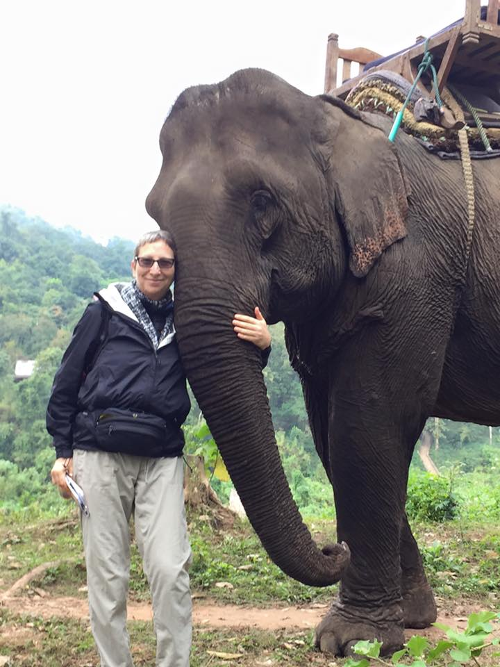 Vietnam I Can T Believe I M Riding An Elephant Laura Davis