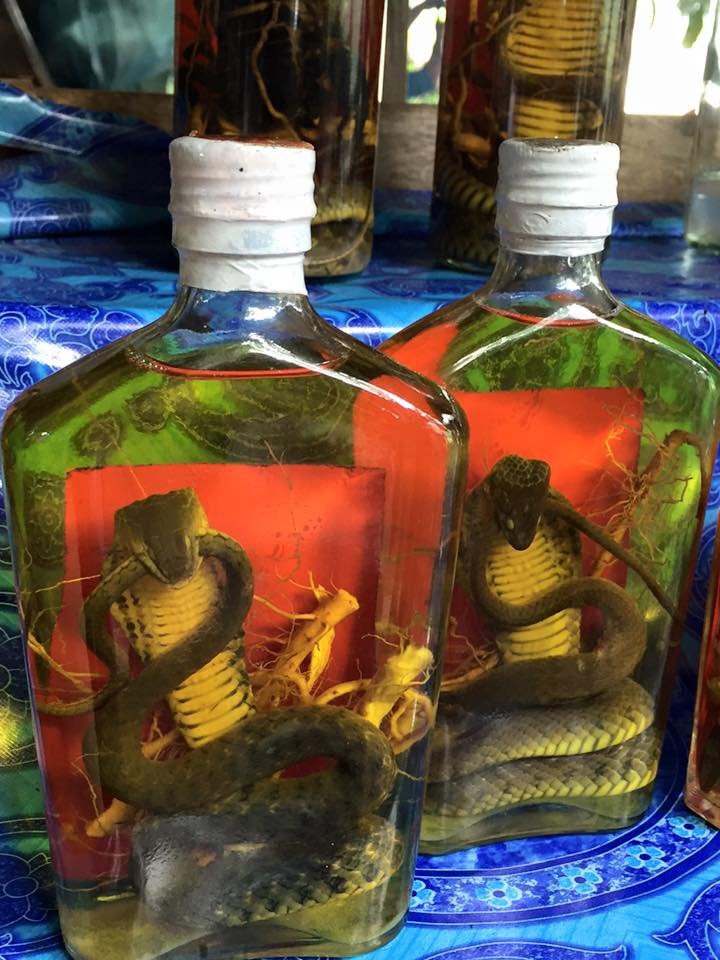 Snakes in a bottle of booze