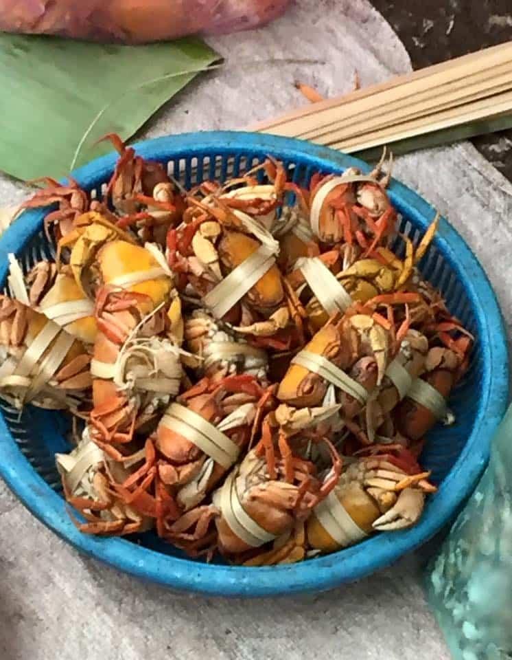 tied-crab