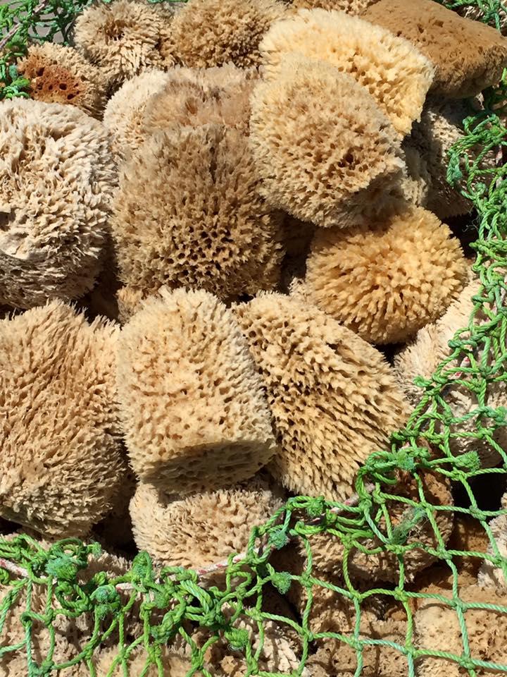 laura-davis-greece-heraklion-sponges