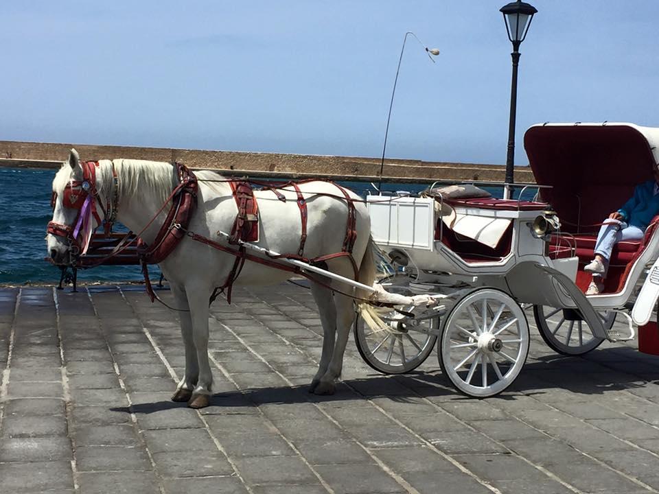 laura-davis-greece-chania-harbour-ride