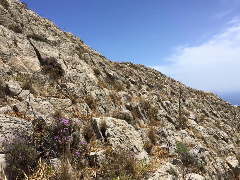 laura-davis-greece-hilltop-hike