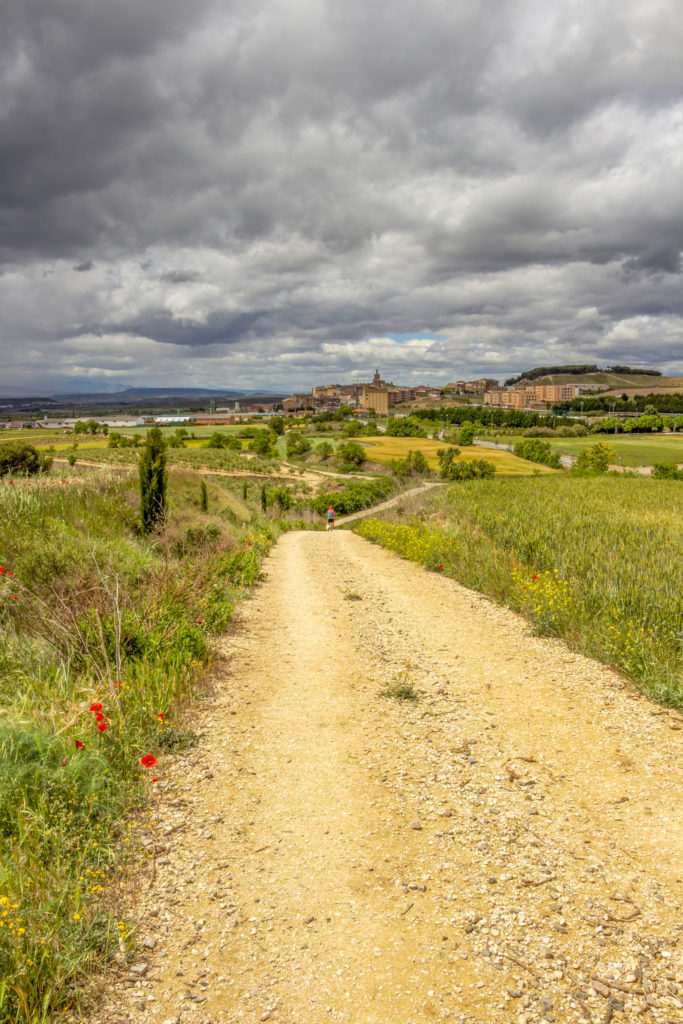Unpaved country road leading to Viana on the Way of St. James, Camino de Santiago in Navarre, Spain