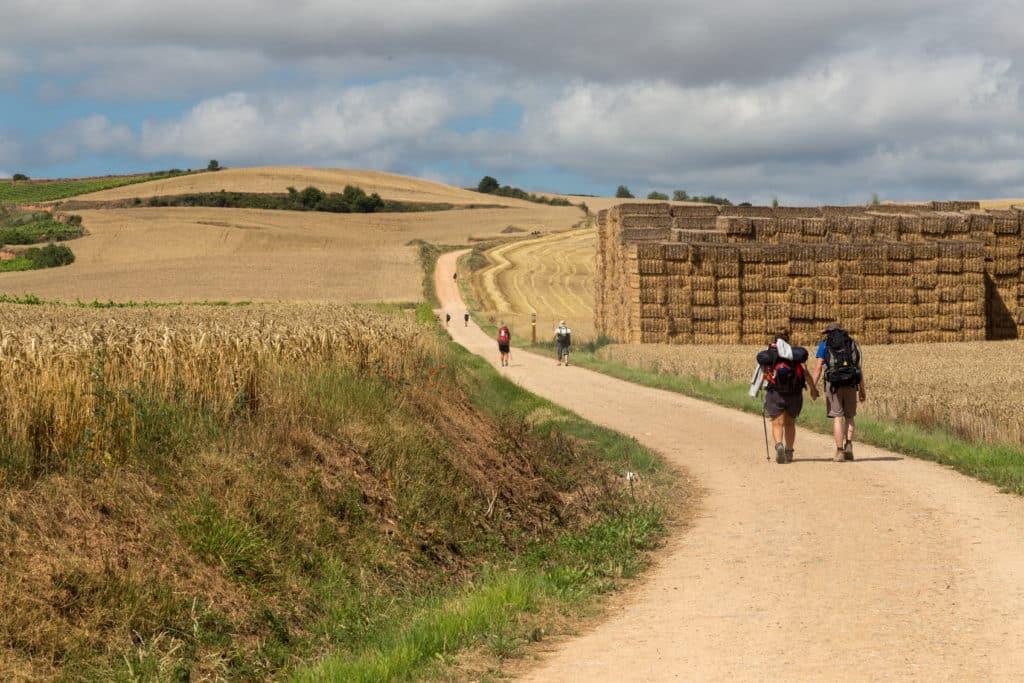 Walking through the grain fields near Ciruena on the Camino de Santiago