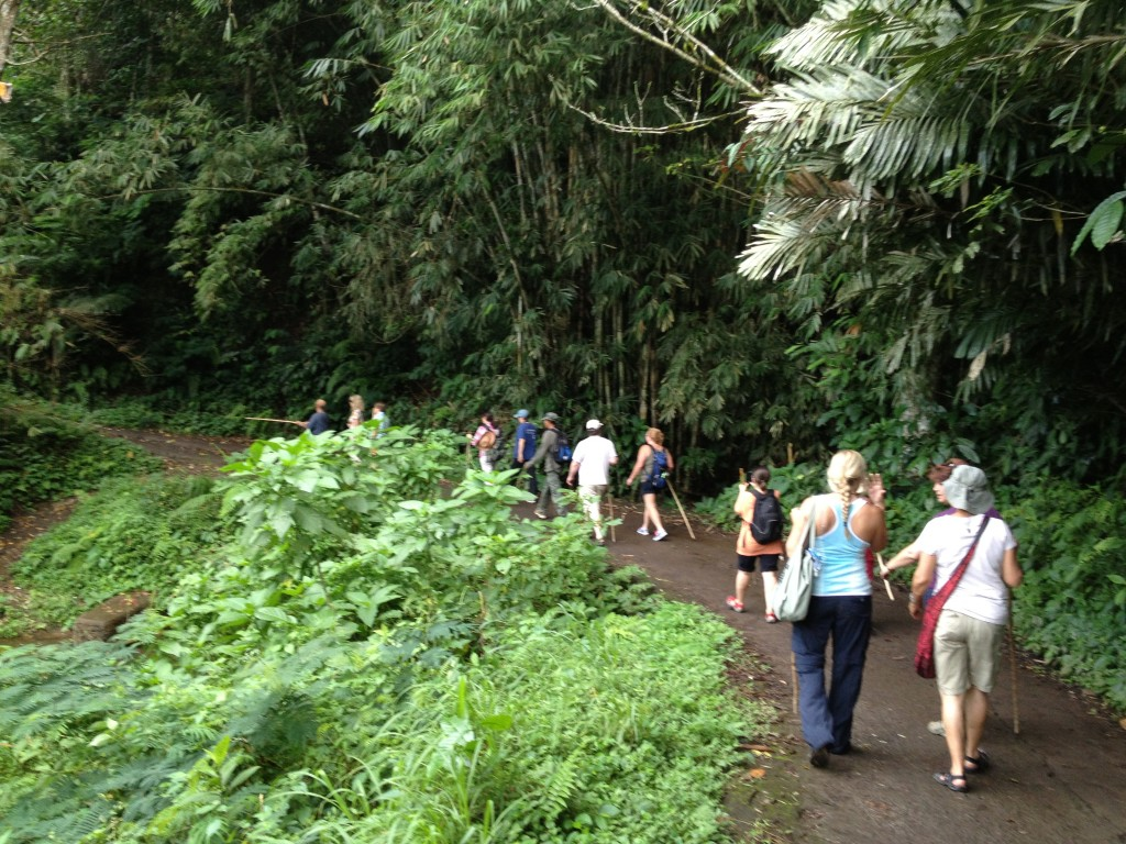 Virtual Vacation: Munduk: Land of Plenty, Day 23